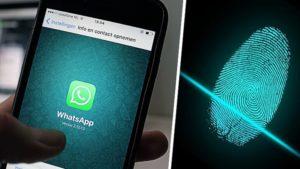 WhatsApp parmak izi kilidi yeni güncelleme ile gelebilir!
