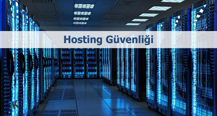 Web hosting güvenliği