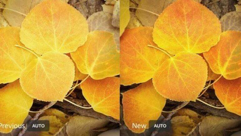 Adobe Lightroom mobil sürüme yeni özellikler eklendi
