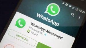 WhatsApp iletildi özelliği aktif edildi